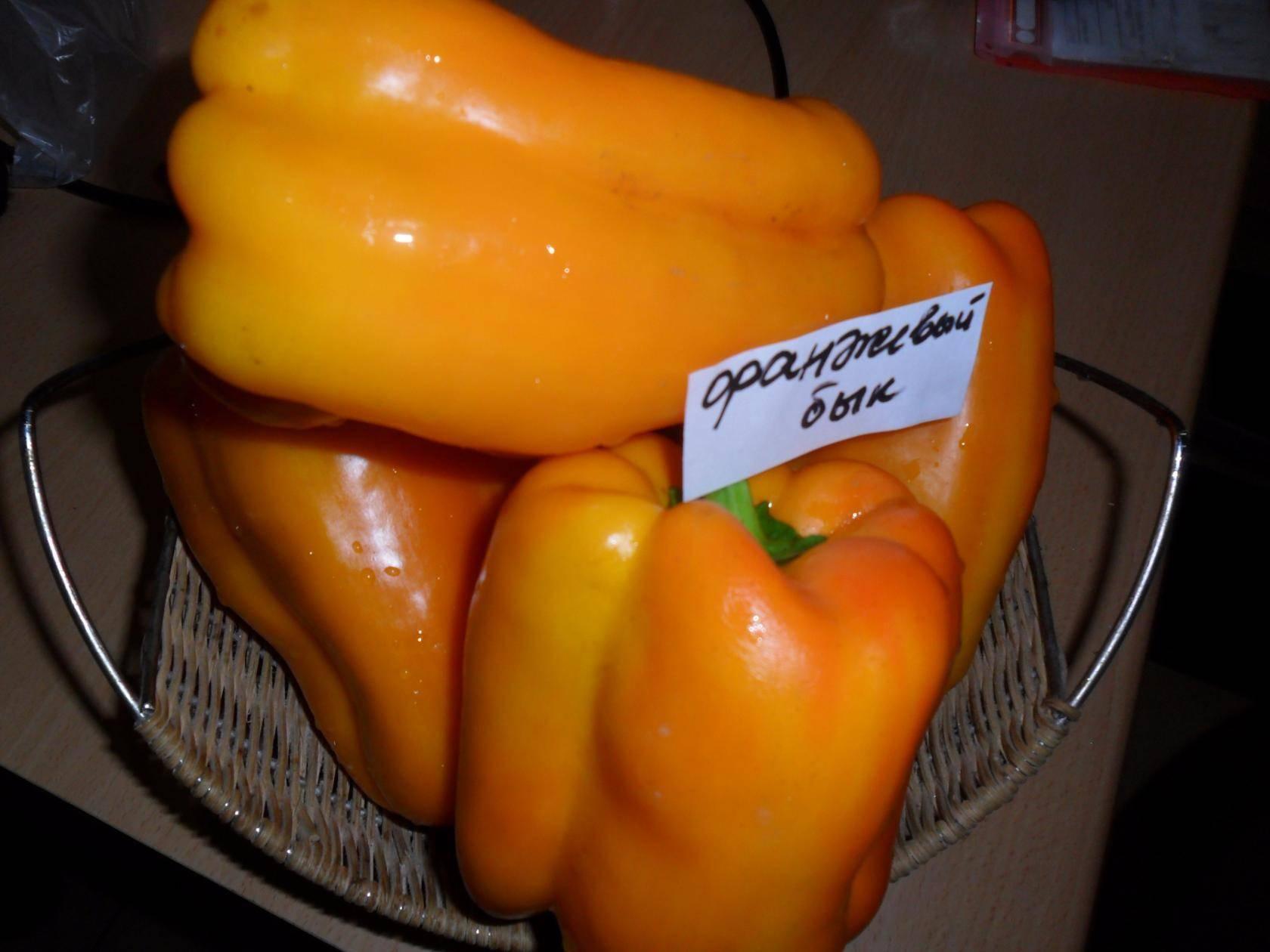 Лучшие сорта желтого перца: описание и характеристики - сад и огород