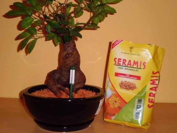 Субстрат для орхидей seramis
