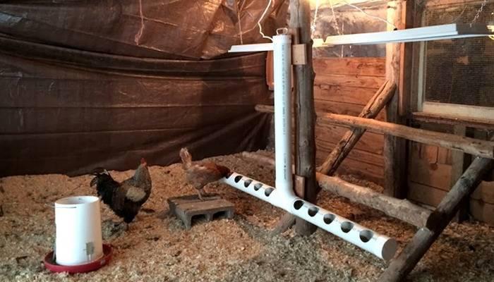 Автоматическая кормушка для кур: автокормушка с таймером своими руками. оригинальные идеи автоматических кормушек для цыплят-бройлеров