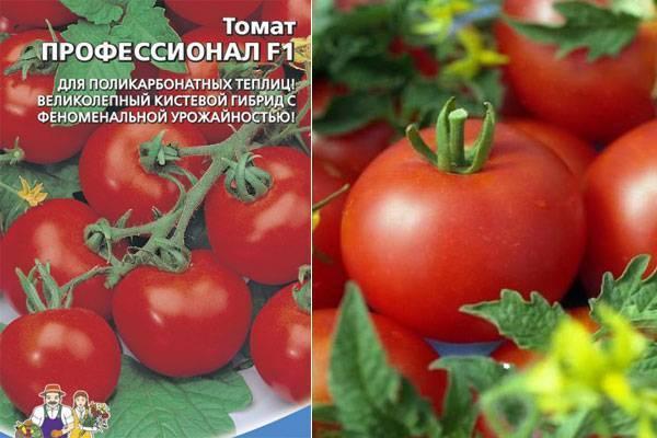 Томат дрова: характеристика и описание сорта, отзывы, фото, урожайность