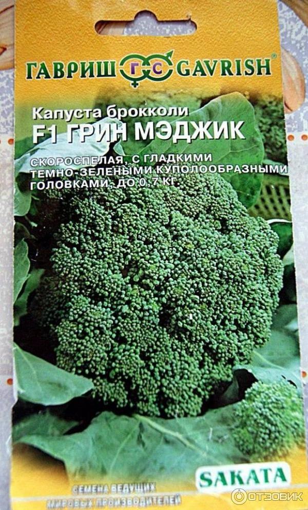 Лучшие сорта и гибриды брокколи