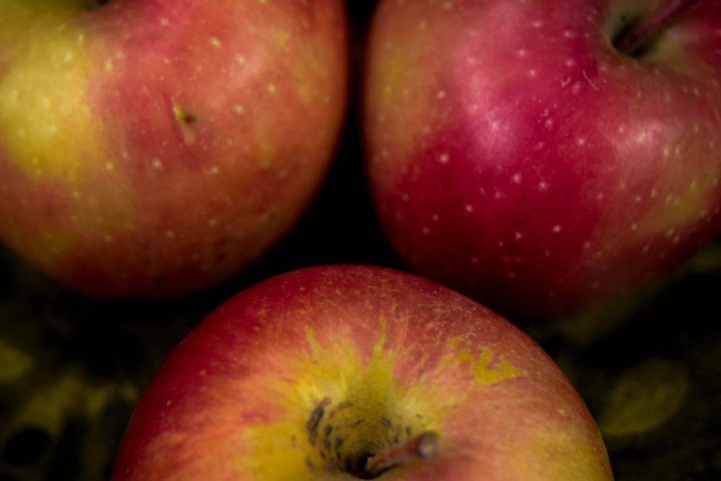 Самое большое в мире яблоко - мыдачники