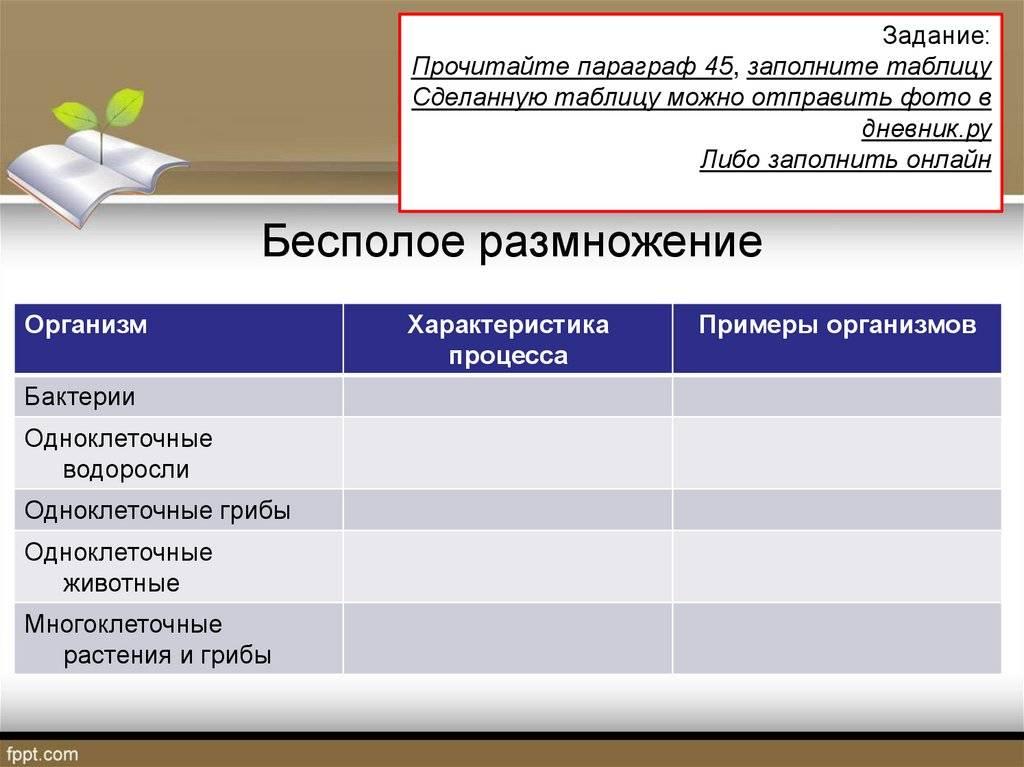 Половое и бесполое размножение организмов (9 класс) – сравнение и значение в таблице