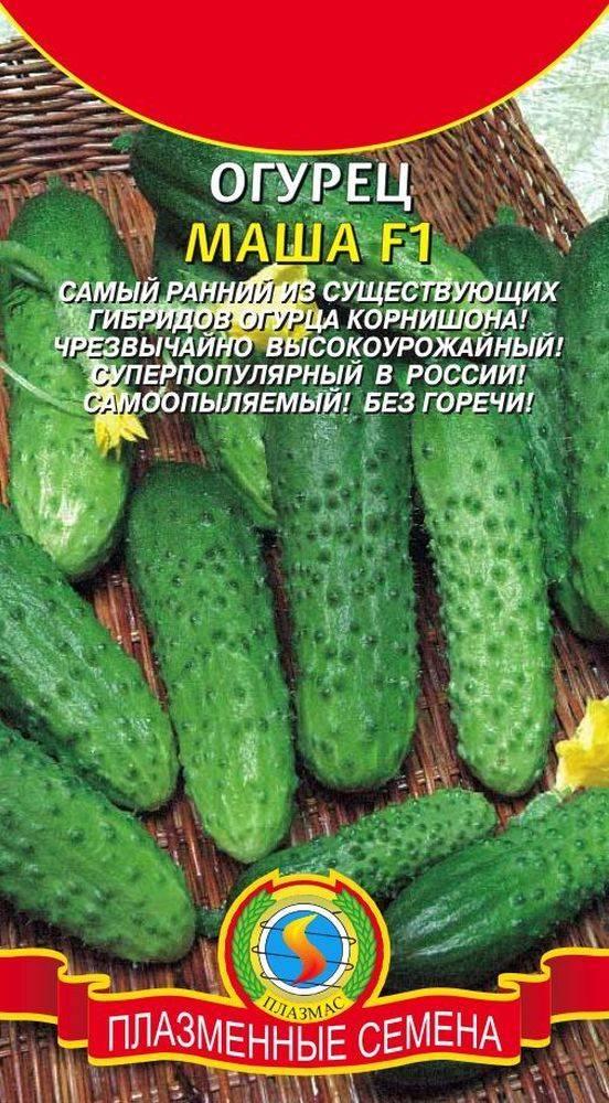 Урожайные сорта огурцов для открытого грунта и для теплиц