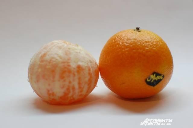 Мандарины: марокканские и абхазские фрукты, когда созревают в абхазии и в марокко, когда начинается сезон и родина цитрусовых