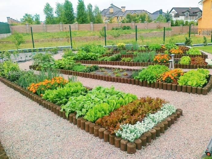 Планировка огорода: не только красивый, но и урожайный огород на supersadovnik.ru