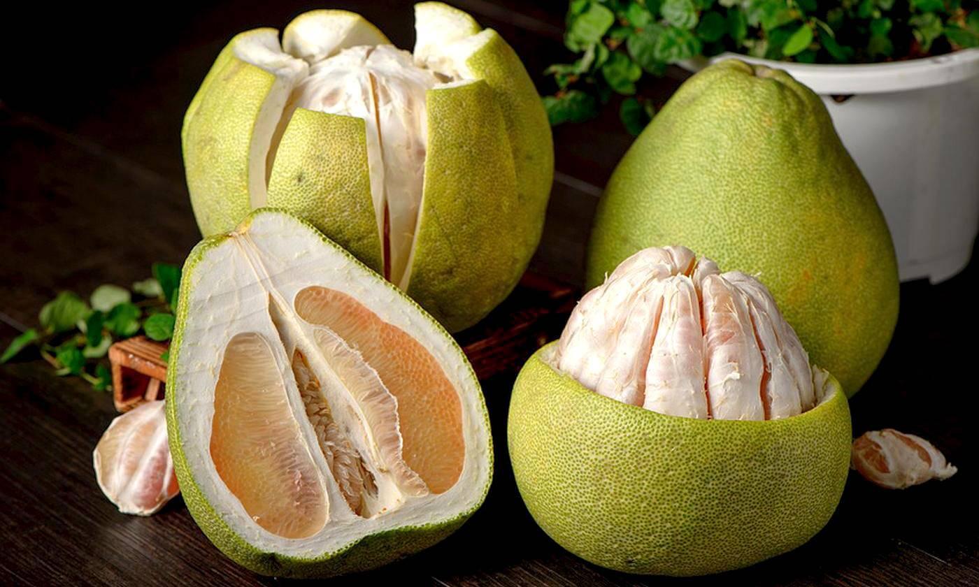 Цитрусовый фрукт памела — где и как выращивается