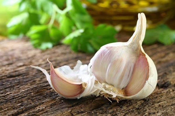 Как сажать озимый чеснок: лайфхаки огородникам: новости, чеснок, огород, урожай, советы, сад и огород