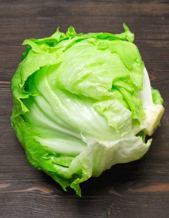 Капуста айсберг: полезные свойства, фото — selok.info