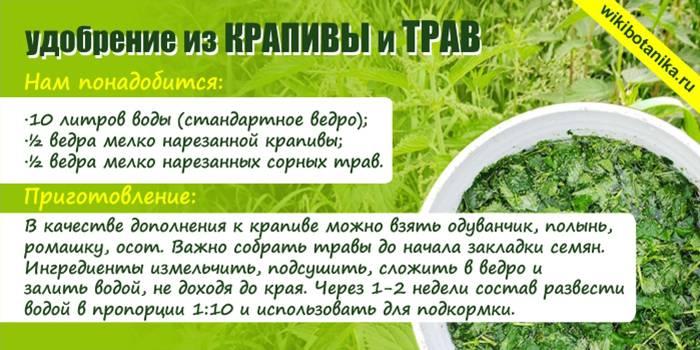 Как сделать удобрение из крапивы и травы для растений
