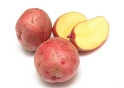 Картофель лина: описание сорта, фото, отзывы об урожайности и особенностях выращивания, характеристика вкусовых качеств и советы огородников