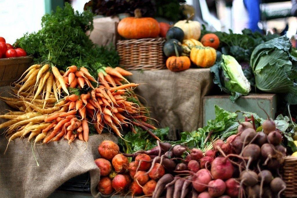 Севооборот овощных культур на дачном участке: таблица