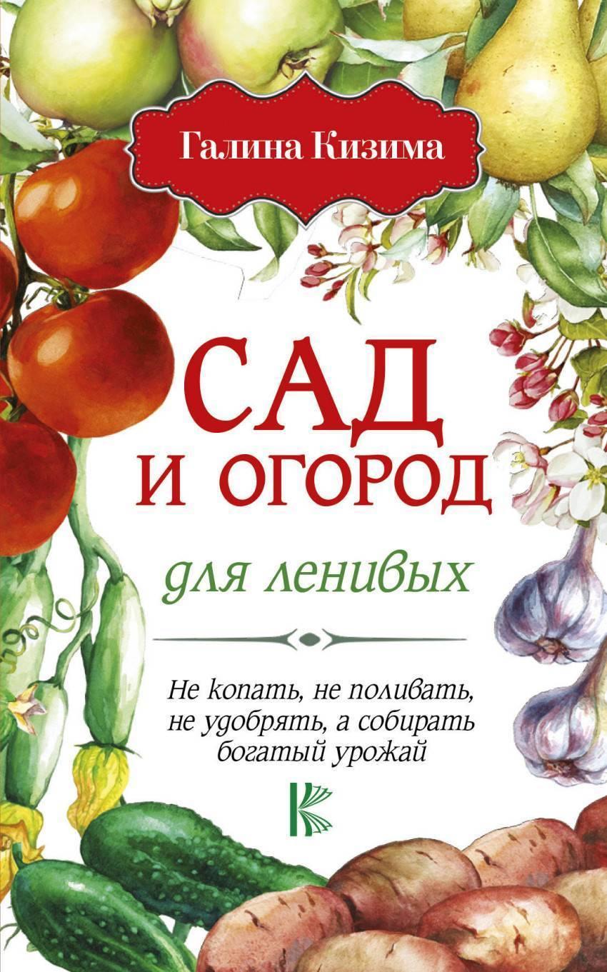 Посадка томатов по методу галины кизимы — плюсы и минусы «пеленочной» методики
