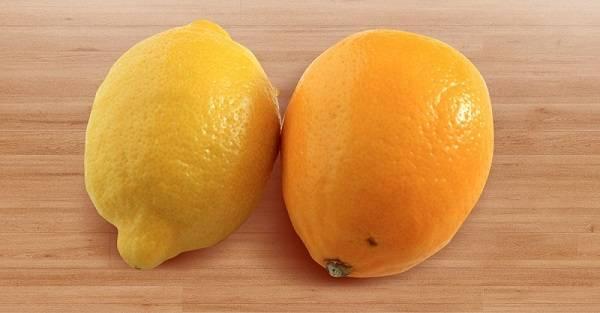 Лимон «мейера»: описание, фото, уход в домашних условиях