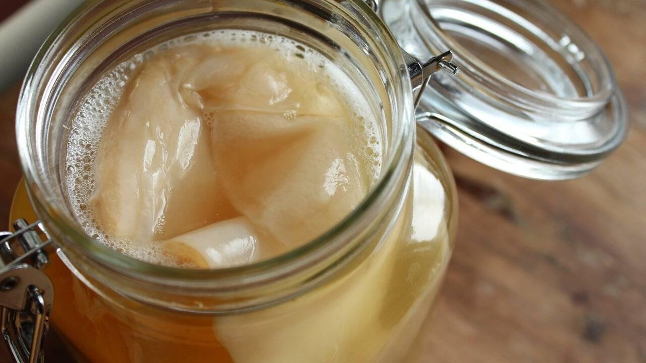 Чайный гриб: полезные свойства напитка и использование настоя для ухода за телом