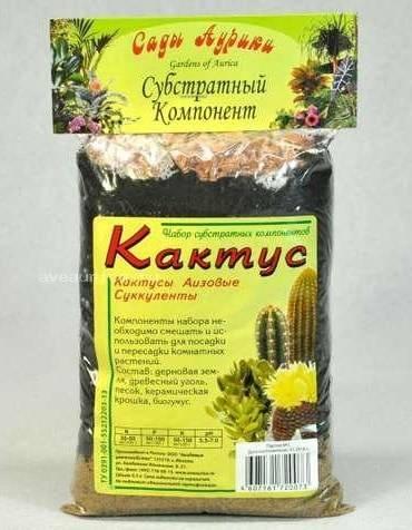 Как посадить замиокулькас: отростком (черенком), взрослым листком без корней, листочком selo.guru — интернет портал о сельском хозяйстве