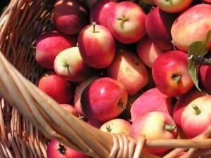 Орехи и сухофрукты при гастрите с повышенной кислотностью | компетентно о здоровье на ilive
