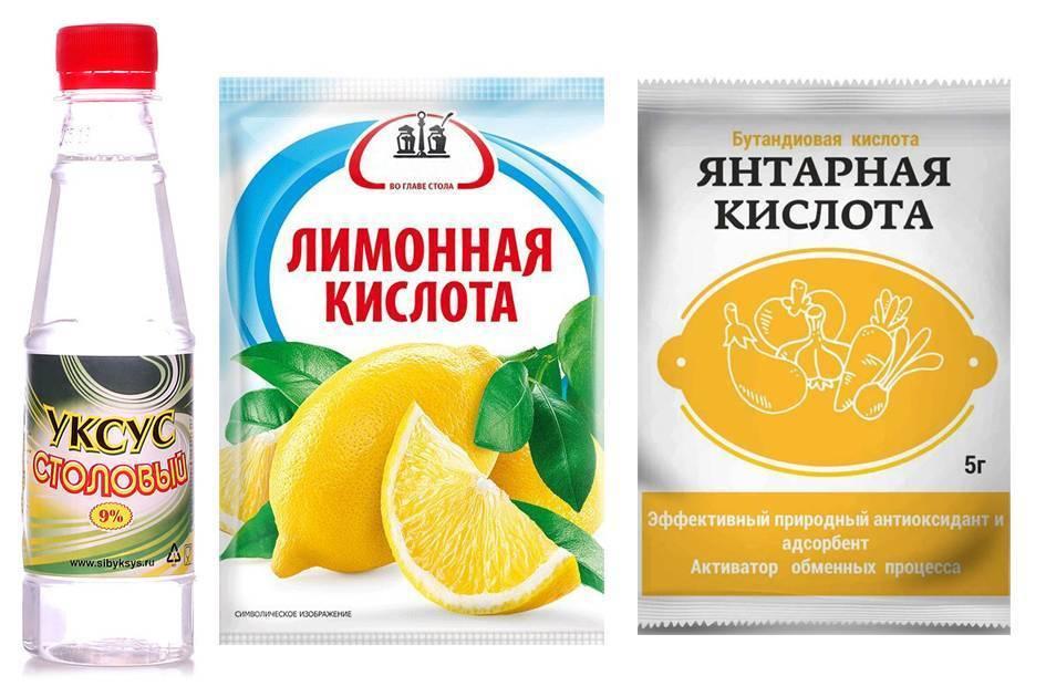Гортензии полив лимонной кислотой - цветочный мир