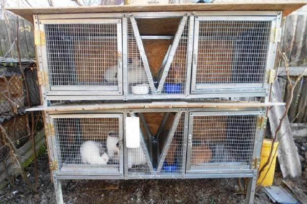 Клетки для кроликов в 2 или 3 яруса своими руками