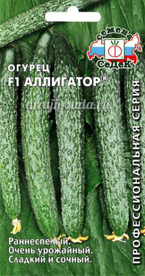 Огурец хрустящий аллигатор f1: отзывы, фото, урожайность