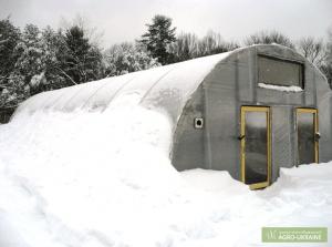Выращивание огурцов в теплице зимой: подготовка теплицы, почвы и высадка