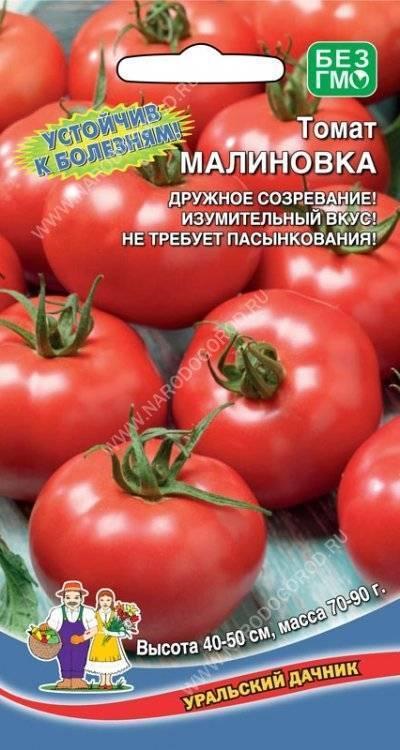 Томат малиновка - описание и характеристика сорта