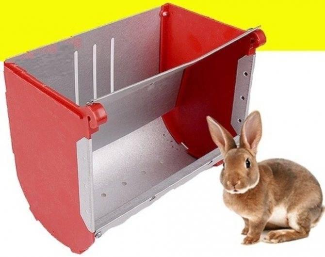 Сенник для кроликов своими руками: фото и видео сенник для кроликов своими руками: фото и видео