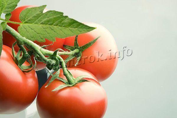 Томат бабушкин подарок: описание, выращивание, уход и фото