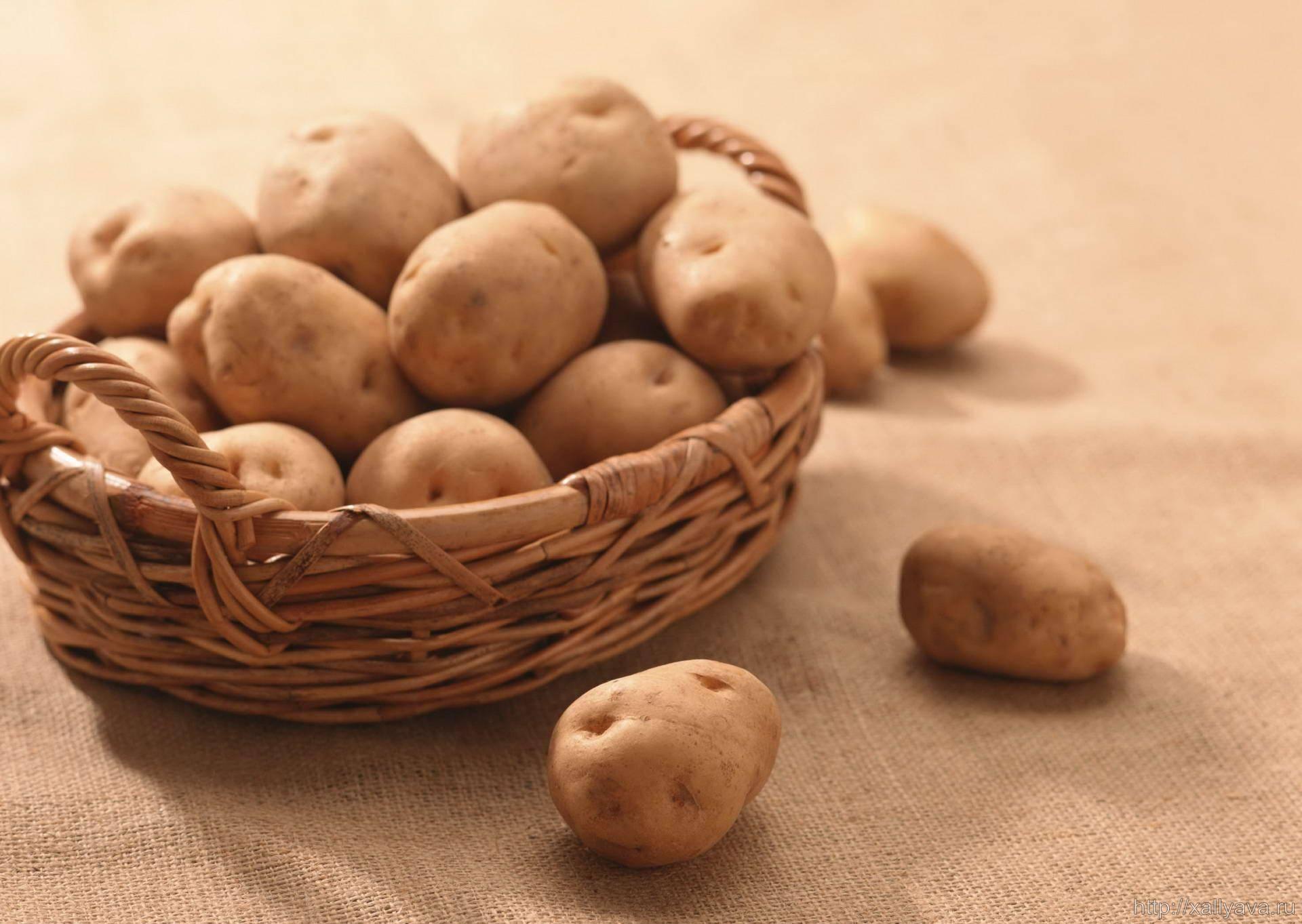 Картофель варёный — минеральный состав