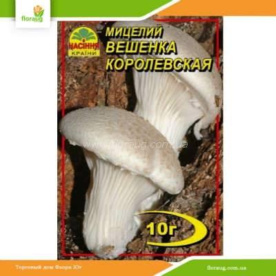 Мицелий на палочках: как вырастить грибы