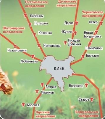 Пора собирать маслята! где это лучше делать и когда: места и карта сбора по регионам