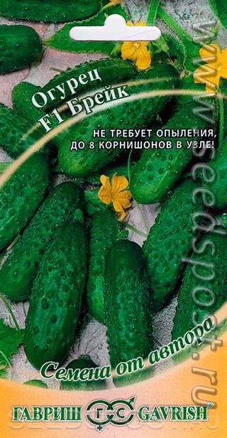 Гибрид огурцов «брейк f1»: »: описание сорта, уход и урожайность