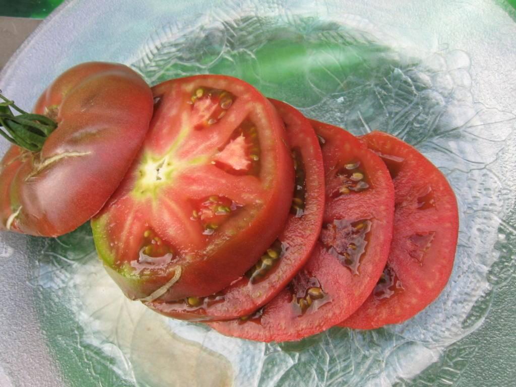 ✅ помидоры самара. описание сорта томата «самара f1» - cvetochki-ulyanovsk.ru