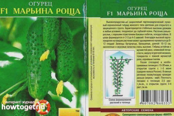 Огурцы марьина роща описание сорта фото отзывы