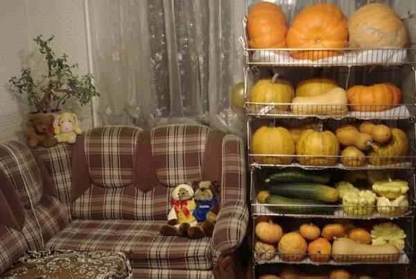 Можно ли и как сохранить разрезанную тыкву в домашних условиях