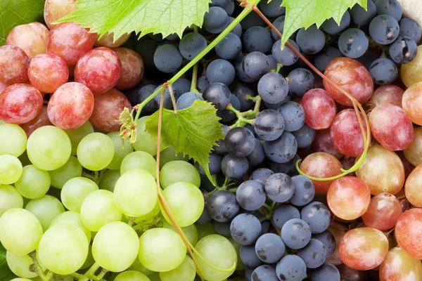 Красный виноград для здоровья ног