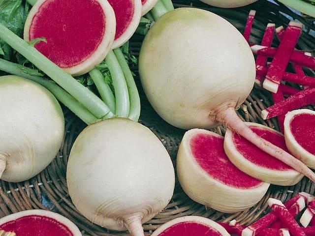 Арбузная редька - выращивание и уход. особенности, польза, рецепт салата