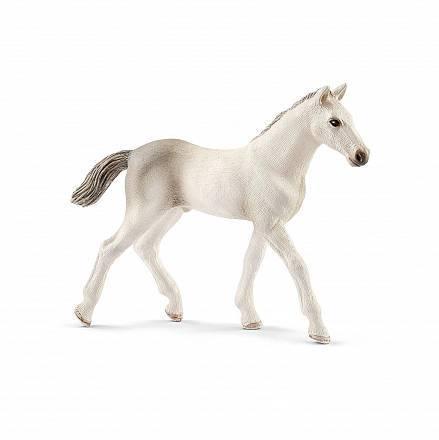Разведение лошадей в домашних условиях видео   продвижение сайтов в яндекс