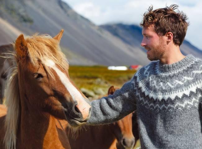 Тракененская лошадь: история, экстерьер, характер, особенности содержания, разведение, использование