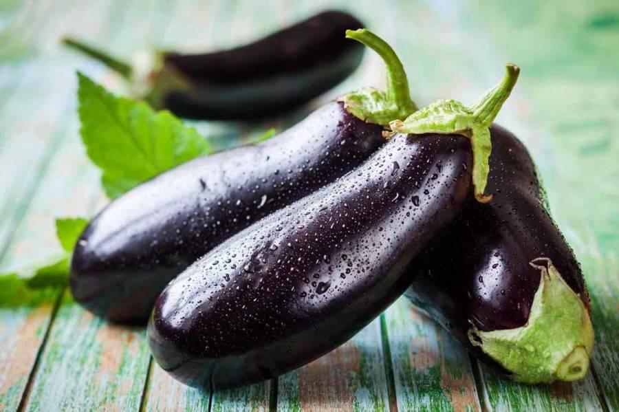 Баклажан: польза и вред, калорийность, баклажаны при грудном вскармливании