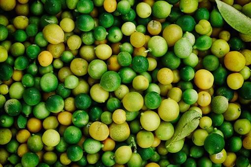 Лайм — полезные свойства, использование в кулинарии. рецепты с лаймом.