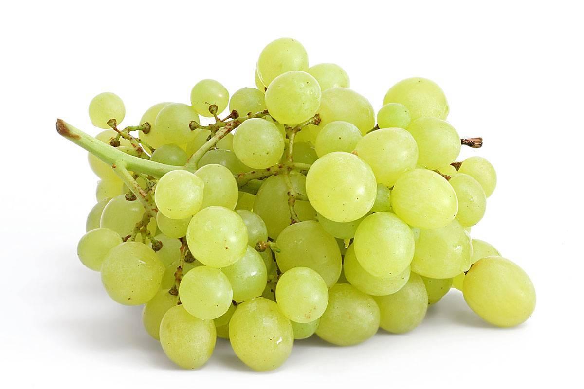 Калорийность разных сортов винограда: черного и белого