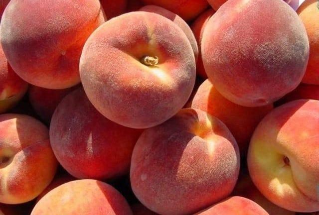 Персик редхейвен: описание сорта и характеристики, посадка, выращивание и уход с фото