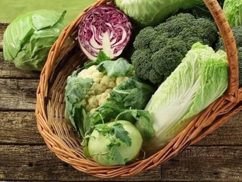 Лучший сорт капусты для хранения | вырасти сад!
