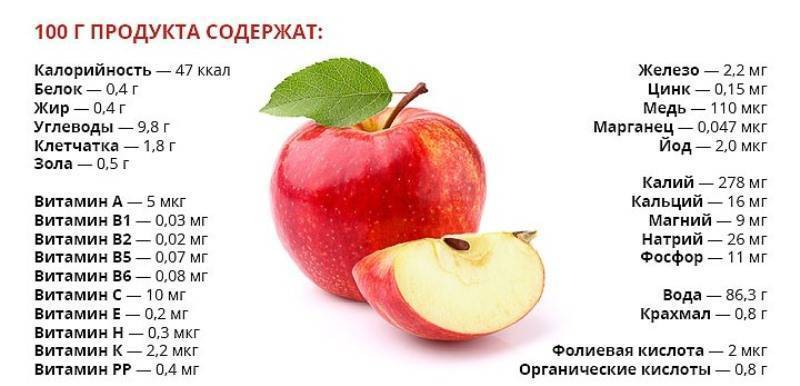 Польза сушёных яблок и методы их использования