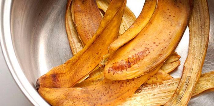 Банановая кожура как удобрение в домашнем цветоводстве: когда применение даст эффект?