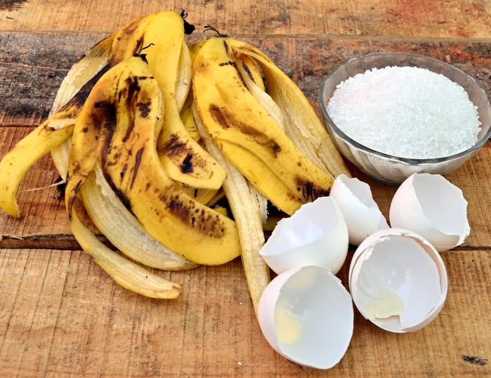 Удобрение из банановой кожуры для комнатных и огородных растений
