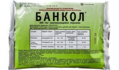 «кораген, кс», инсектицид (новинка)