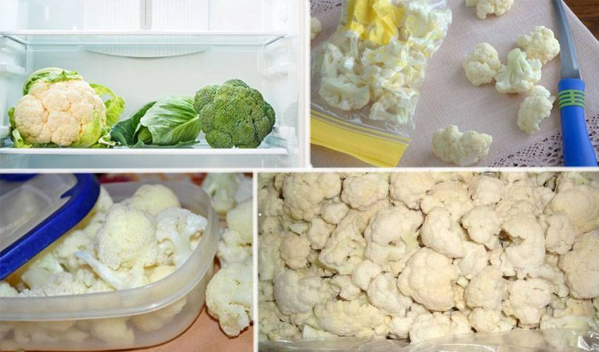 Как хранить капусту цветную на зиму в домашних условиях, используя холодильник и морозильную камеру? русский фермер