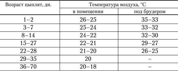 Оптимальный температурный режим для бройлеров в процессе выращивания